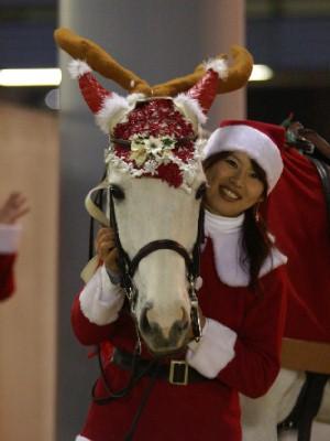 川崎競馬の誘導馬 ファンサービス中 2