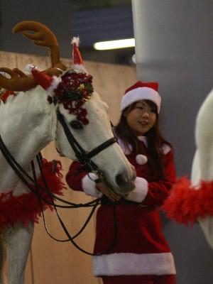 川崎競馬の誘導馬 ファンサービス中 3