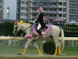 川崎競馬の誘導馬 結婚祝いVer 2