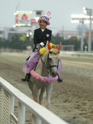 川崎競馬の誘導馬 結婚祝いVer 3