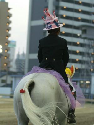 川崎競馬の誘導馬 結婚祝いVer 5