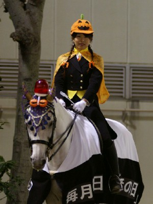 川崎競馬の誘導馬 10月 パトロールホースVer ユーちゃん 1