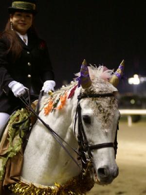 川崎競馬の誘導馬 11月 もみじVer ユーちゃん 4