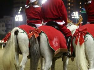 川崎競馬の誘導馬 12月クリスマス 重賞Ver 3