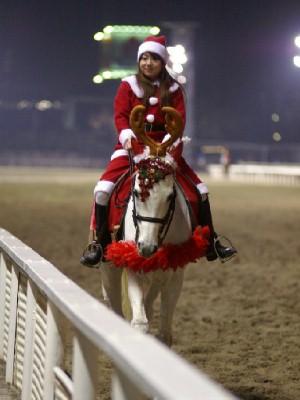 川崎競馬の誘導馬 12月クリスマスVer ユーコースプリングくん 1