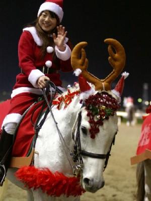 川崎競馬の誘導馬 12月クリスマスVer ユーコースプリングくん 2