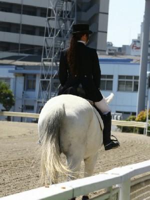 川崎競馬の誘導馬 4月開催 コスプレ無しVer 3.jpg