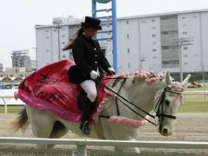 川崎競馬の誘導馬 4月開催 桜Ver シロくん 4.jpg
