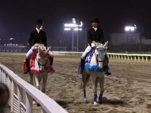 川崎競馬の誘導馬 5月 重賞Ver 2