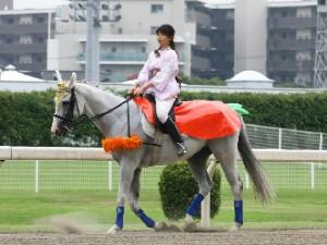 川崎競馬の誘導馬 ニンジンVer