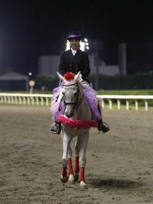 川崎競馬の誘導馬 9月開催 重賞Ver ユーちゃん1