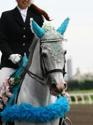 川崎競馬の誘導馬06月開催 紫陽花Ver