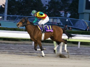 東京2歳優駿牝馬 優勝はプリマビスティー