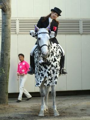 牛になった誘導馬 トライアンフトーチくん 1